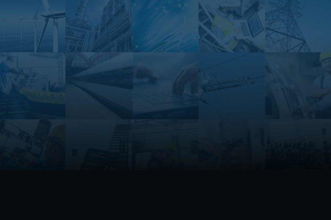 Wexøe: Fra fire virksomheder til fælles profil
