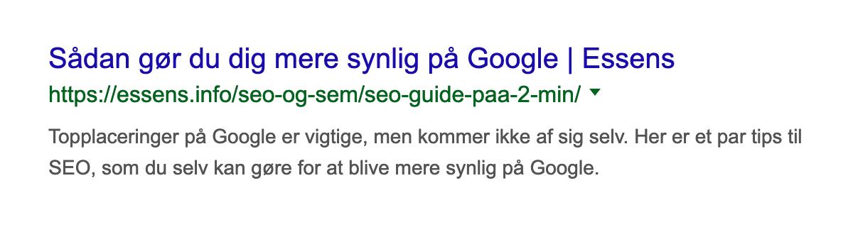 Eksempel på et søgeresultat på Google